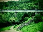 2018.08.28 龍騰斷橋&飛行樹屋:IMG_7228.JPG