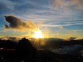 塔塔加雲海.東埔山.特富野古道:IMG_4241.JPG