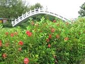 2016.08.28 慈湖:IMG_9071.JPG
