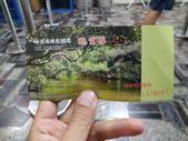 四草綠色隧道:1.0 (複製).JPG