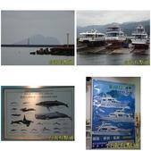 烏石港環境教育中心:相簿封面