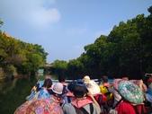 四草綠色隧道:2.2 (複製).JPG