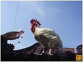 2010-04-10南投受天宮各香團:R0029740.jpg