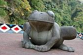 司馬庫斯冬之美:青蛙石景點的人工青蛙石--4