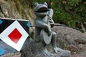 司馬庫斯冬之美:歡樂的青蛙--5