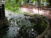 北越山水有陽光:vietnam 2008 06 22 022.jpg
