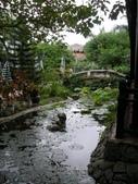 北越山水有陽光:vietnam 2008 06 22 026.jpg