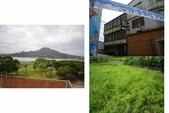 大台北散步筆記:淡水花海 20110626 遺世獨立0003.jpg