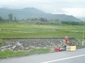 北越山水有陽光:vietnam 2008 06 22 051.jpg