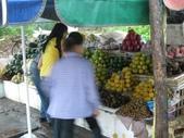 北越山水有陽光:vietnam 2008 06 22 063.jpg