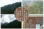南橫天龍 嘉義朴子溪出海口 2011-03-06~8:P天龍 嘉義05.jpg