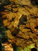 北越山水有陽光:vietnam 2008 06 22 137.jpg