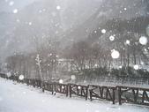 北海道之旅:北海道之旅 043.jpg