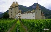 埃格勒(Aigle)城堡與葡萄園:_DSC4518-1.jpg