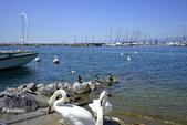 日內瓦湖沿岸城市-日內瓦-尼永-洛桑:_DSC4614-1.jpg