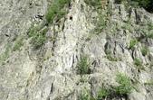 法國霞慕尼Chamonix-Mont-Blanc:_DSC4549-1.jpg