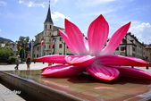 法國安錫Annecy:_DSC4582-1.jpg