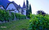 埃格勒(Aigle)城堡與葡萄園:_DSC4474-1.jpg