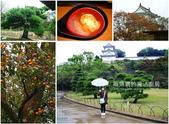 國外旅遊:【回顧】2004 阪神旅遊。明石城柿子掉滿地、神戶港夜景美不勝收-01.jpg