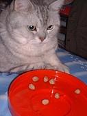 2007:咪獎與開心果