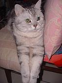 2007:腳腳垂下來好可愛