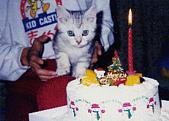 2000:咪獎來我們家的第一個耶誕節