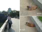 國外旅遊:2004阪神旅遊。誤觸地雷二連發-03-2.jpg