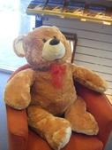 澳洲生活大小事:6 老公又為我新添了Teddy Bear,他很大隻喔!有一公斤重.jpg