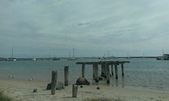 西澳。Port Denison:13 頗有詩意的木樁海景.jpg