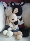 花蓮。住:3境外漂流─而我很喜歡這一窩兔兔家庭的感覺.jpg