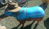 西澳。Northampton:16 西澳牛仔羊,我最喜歡這隻的畫風,一看就知道功力高深.jpg