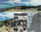 西澳。Rockingham。Penguin Island:尖銳的遠古珊瑚礁,凹陷處都是滿滿的小蝸牛.jpg