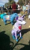 西澳。Northampton:10 牧羊犬也一併出場,還戴眼鏡喔!.jpg