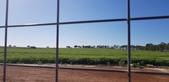 2018 西澳野花季:3 只能從籬笆遙望的大耳朵天線收訊碟.jpg
