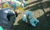 西澳。Northampton:7 兒童繪本羊,正面畫了一個小仙女,但我更喜愛背面的貓頭鷹和吉他.jpg