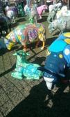 西澳。Northampton:8 成人彩繪羊,中間的羊都只能遠觀.jpg