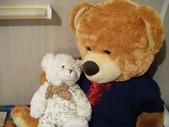澳洲生活大小事:7 Teddy 和 Charlie相見歡~真是父子情深~~.jpg