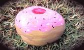 彩繪石頭 Rock Paintings:Day 7-Doughnuts.jpg