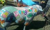 西澳。Northampton:15 Playgroup羊.jpg