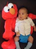 Kids:小蓋瑞與Elmo─Elmo還是比較大隻.jpg