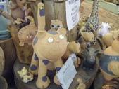 西澳。Balingup:15 陶瓷貓,大眼睛實在是可愛.jpg