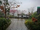 三峽花岩山林:jpg