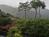 三峽花岩山林:.jpg