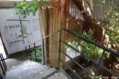 台中。漫步范特喜中興一巷 - 綠光計劃打造老房新生命:IMGP8292.JPG