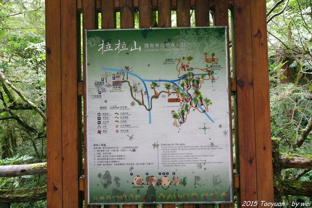 2015 盛夏。再訪拉拉山:IMGP0312.JPG
