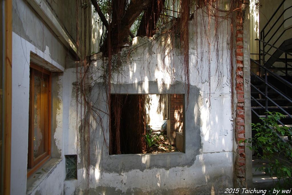 台中。漫步范特喜中興一巷 - 綠光計劃打造老房新生命:IMGP8337.JPG