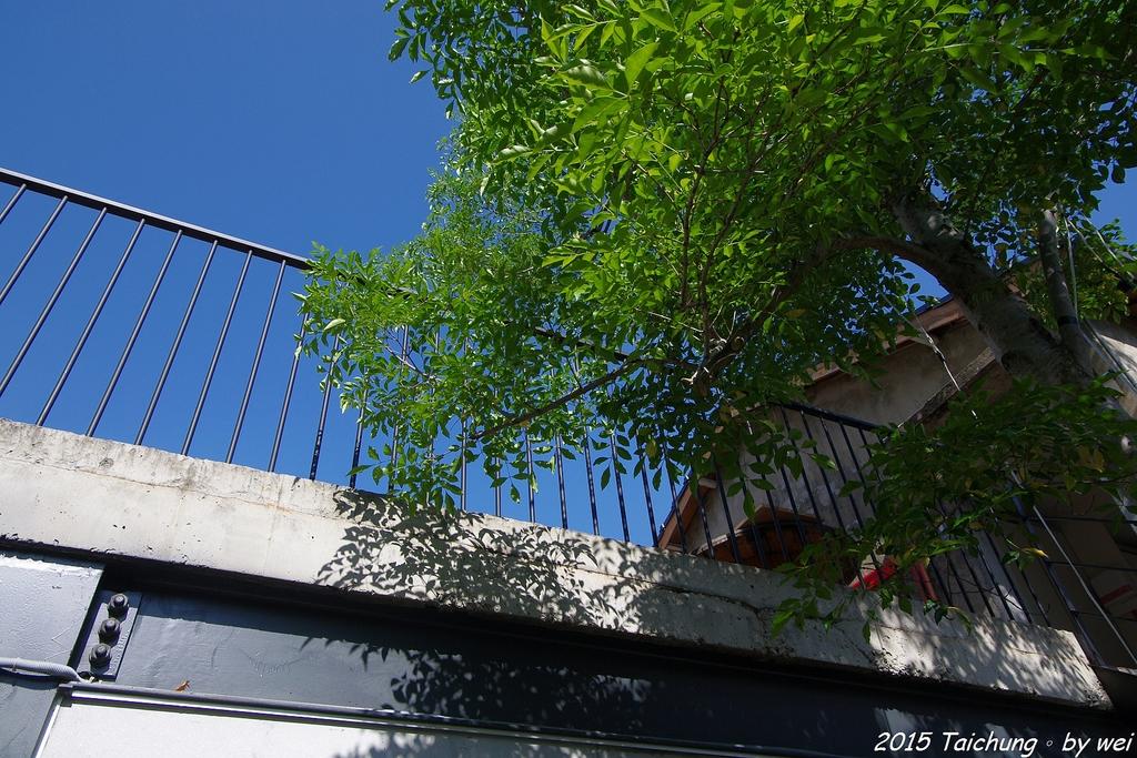 台中。漫步范特喜中興一巷 - 綠光計劃打造老房新生命:IMGP8244.JPG