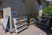 台中。漫步范特喜中興一巷 - 綠光計劃打造老房新生命:IMGP8322.JPG