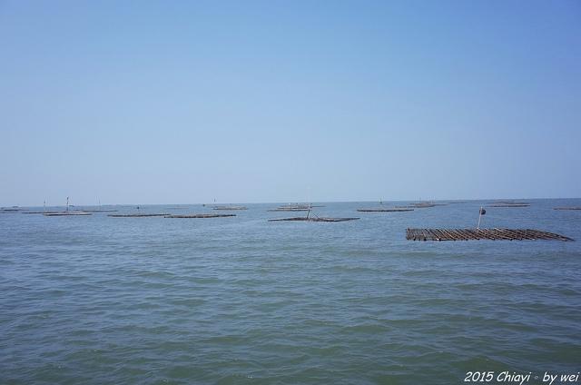 R0000377.JPG - 嘉義東石。逐漸消失的國境之西。飄移國土外傘頂洲