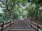 1051022 桃園虎頭山公園步道、虎頭山南峰、虎頭山:DSC09798C.jpg